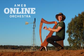 AMEB Online Orchestra - Deb on Harp